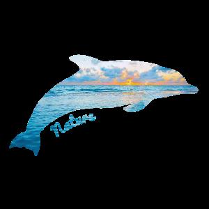 Delphin, Natur, Nature, Ozean, Meer