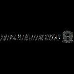 logo napis2