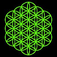 Blume des Lebens 15