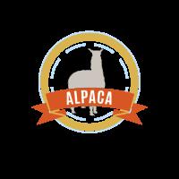 Alpaka Alpaca Lama Lamaste Peru Lima Inka Chile