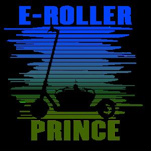 Elektroroller Cityroller E-Roller Prinz Geschenk