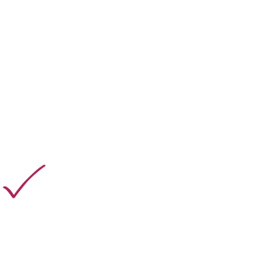 Politik Idiot