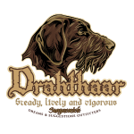 drahthaar_head