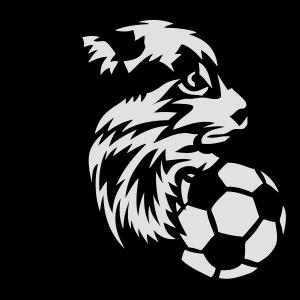 Fußball Fußball Sportverein Logo Luchs