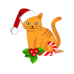 Süße Weihnachtskatze mit Mütze