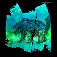 Bär Grizzly Braunbär grizzly GrizzlybärT Shirt