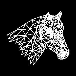 Pferdekopf Reiten Pferd Pony Natur Tiere Geschenk