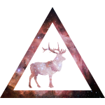 Galaxy Deer Geometry Triangle