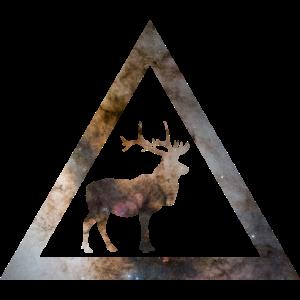 Galaxy Deer Geometry Triangle