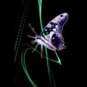 Neon Grünes Licht mit Schmetterling