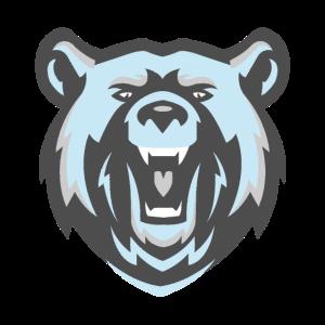 Bär Polarbär Antarktis Nordpol Eishockey Geschenk