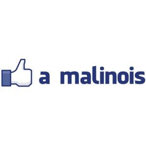 like_a_malinois