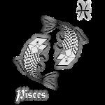 t shirt signe zodiaque poisson astrologie pisces