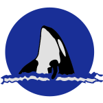 killerwhale_risingsun1