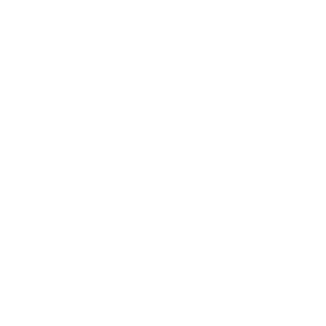 AUCH OHNE BÜCHER