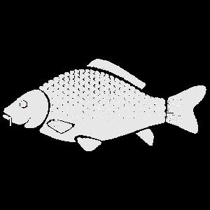 Karpfen Fisch Geschenk Fischkopf Sportfischer