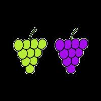 Weintrauben blau grün