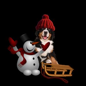 Wintermotiv Shirt , Schneemann , Hund , Schlitten