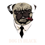 Dog In Black