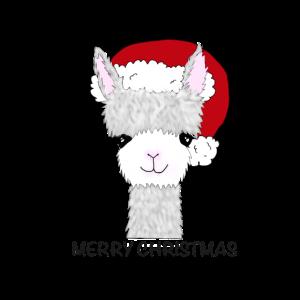 Merry Christmas Weihnachten Geschenkidee Geschenk
