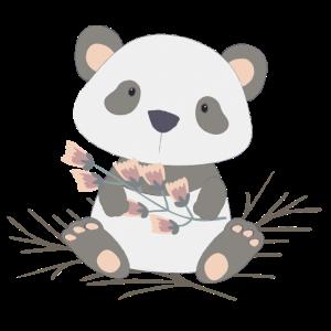 Pandabär   Panda