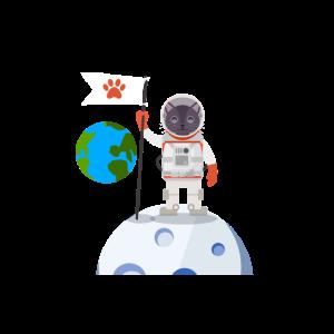 Süße Katze Astronaut Weltall Mond Erde Planeten