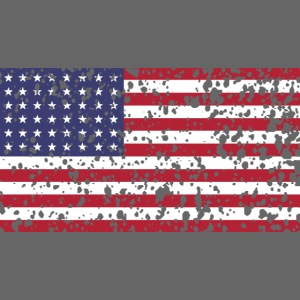 AVM WWII Trashed 48 star flag in color D'Day