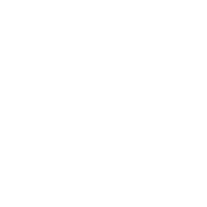 Bear Grunge T- Shirt Design
