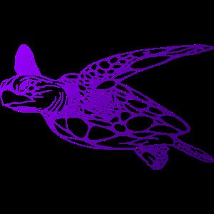 Schildkröte Tauchen Taucher
