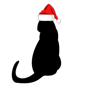 Christmas Cat / present gift