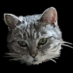Katzenkopf Katze Geometrisch Design