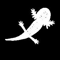 Axolotl Mom