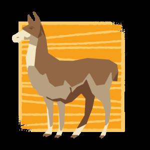 Lama - für Tierfreunde - tierisches Design