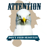 ATTENTION - don't feed seagulls