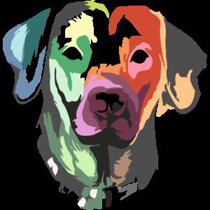 Hund Portrait – Haustier – Tiere – Geschenk