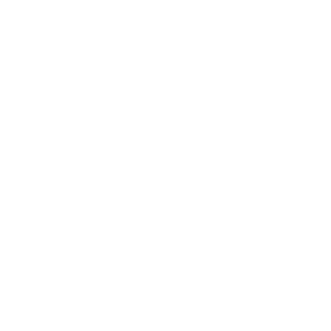 Pferd Herzschlag Heartbeat