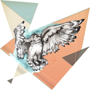 Owl McFly by carographic