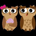 Owli Cupcaki
