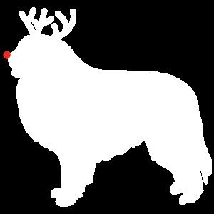Großes Pyrenäen-Ren-Weihnachtshemd