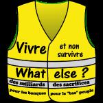 tee shirt gilet jaune vivre et non survivre