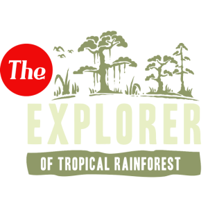 Regenwald Forscher