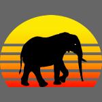 Elefant vor Sonnenuntergang
