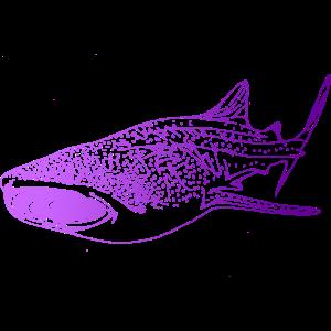 Taucher Tauchen Walhai Hai Geschenk Geschenkidee