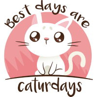 Caturdays katze Haustier