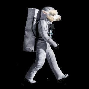 Astronaut Alpaca