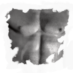Oberkoerper Brust Mann Shirt zerrissen