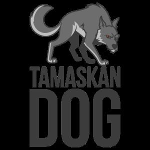 Tamaskan einsamer Wolf Einzelgänger streunen Rudel