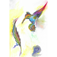 Kolibri-Aquarell