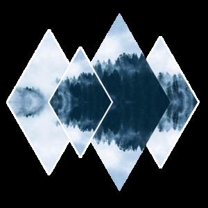 Wald natur Formen Geometrie mathematik