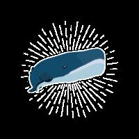 Pottwal Walfisch Säugetier Meerestier Geschenk
